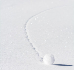 image of a snowball rolling and increasing in size